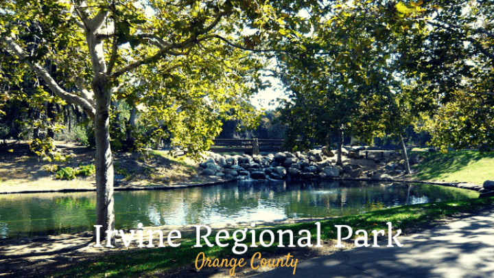 Irvine Regional Park=4 Playgrounds + 1 Zoo + 1 Railroad + 1 Lake + Lots of Ponies