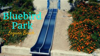 Bluebird Park Laguna Beach metal slides