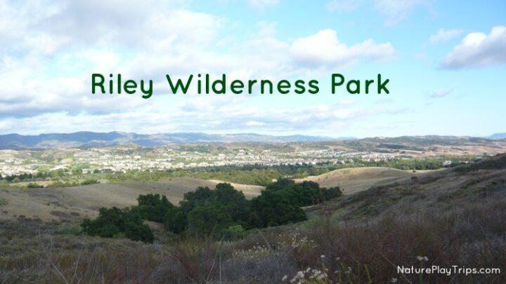 Riley Wilderness Park in Coto de Caza