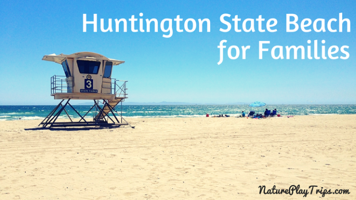 Huntington State Beach for Families: A Relaxing Slice of Sand Off Brookhurst