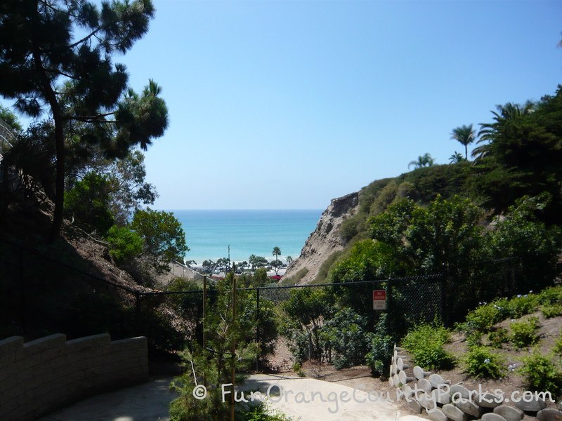 view of ocean between beach bluffs dotted with palm and pine trees