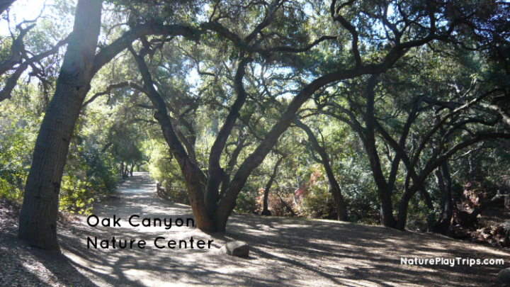 Oak Canyon Nature Center in Anaheim Hills for Kid-Friendly Hiking