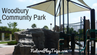 Woodbury Community Park in Irvine