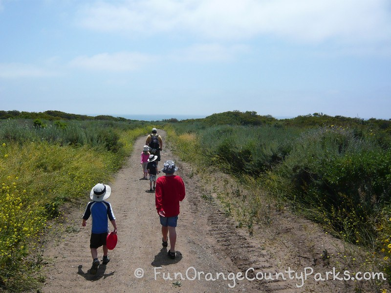 Dad hikes San Onofre beach trail with 4 children
