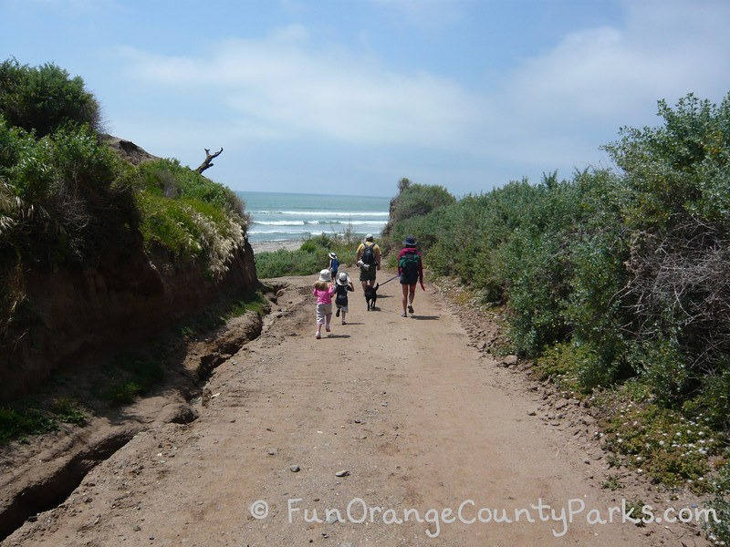 Family group on the way to beach
