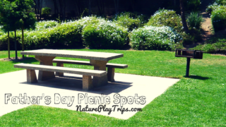 Father's Day Picnic Spots