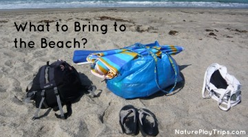 What to Bring to the Beach?