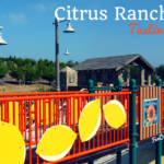 citrus ranch park tustin - park