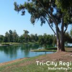 Tri-City Regional Park in Placentia: See Turtles in the Lake and Dodge Waddling Waterfowl