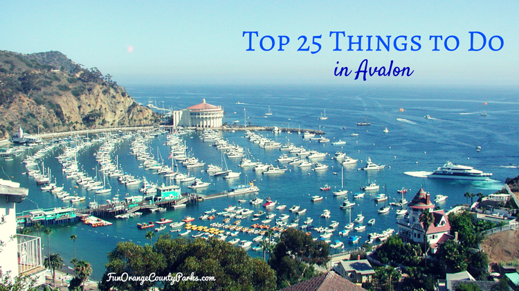Avalon top 25 things to do in catalina island 39 s popular for To do in california