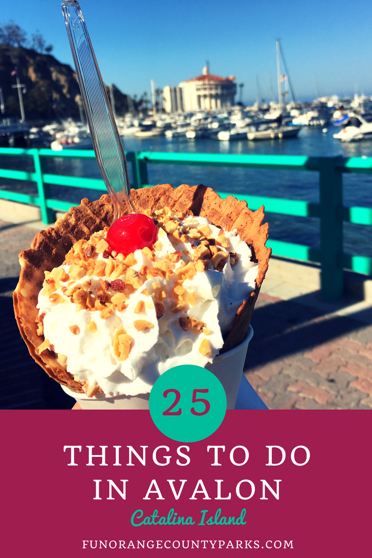 Avalon Top 25 Things To Do In Catalina Island S Popular