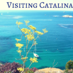visiting Catalina Island basics - water view