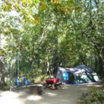 Visit Pfeiffer Big Sur State Park for a Family Camping Adventure