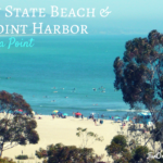 Doheny State Beach and Dana Point Harbor