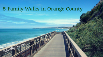 5 Family Walks in Orange County