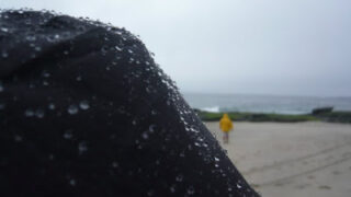 Tidepooling in the Rain