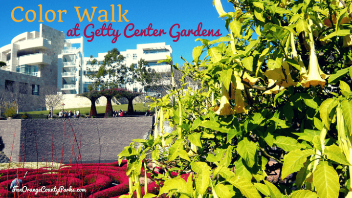 Color Walk at The Getty Center Gardens