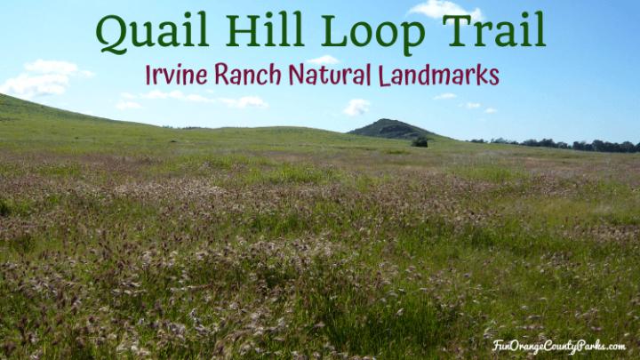Quail Hill Loop Trail in Irvine