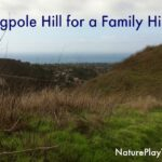 flagpole-hill-featured