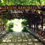 Fullerton Arboretum: Explore Outdoor Rooms Full of Trees