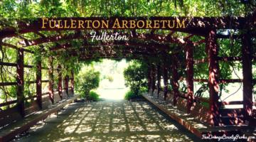 Fullerton Arboretum: Nature Walks through the Trees