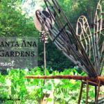 Wonderland of Spring Flowers: Rancho Santa Ana Botanic Gardens in Claremont