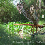 Wonderland of Spring Flowers: Rancho Santa Ana Botanic Gardens in Claremont