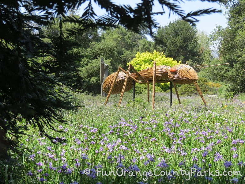 sculpture of giant-sized ant made out of wood
