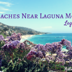 Beaches near Laguna Beach Montage