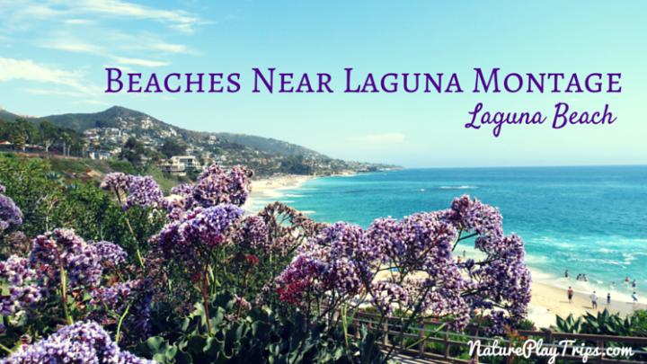 Beaches near Laguna Beach Montage