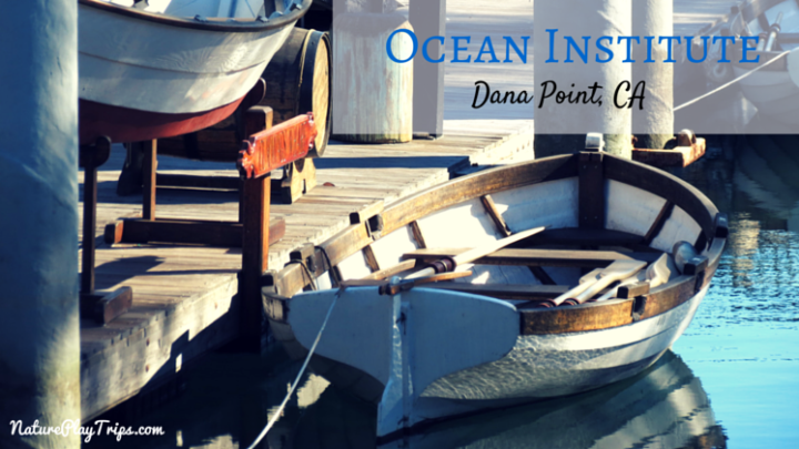 Visit the Ocean Institute in Dana Point for Learning About Local Nautical History and Marine Animals