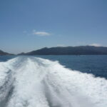 The Best Way to Cure Seasickness is Prevention: Tips for Whale Watching and Catalina Ferry Trips