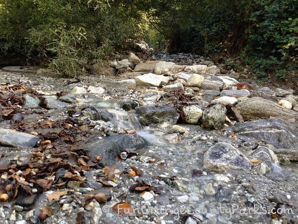 stream crossing at oak glen nature trail