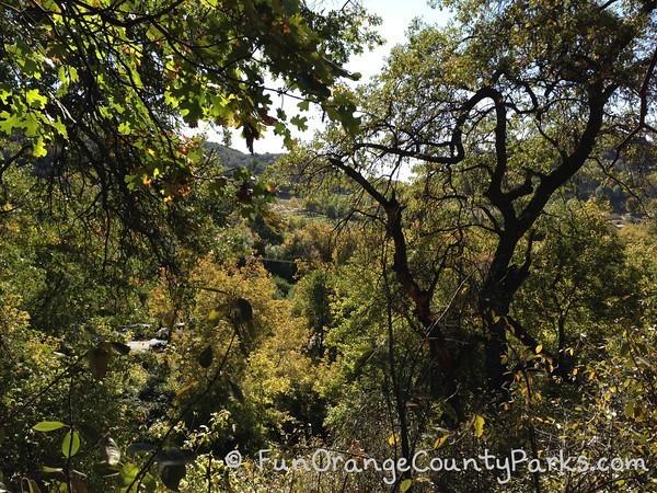 hike views from oak glen nature trail