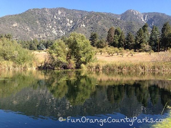 reflection pond at oak glen