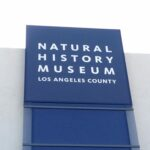 Take a Family Trip to Natural History Museum of Los Angeles for Nature in the Middle of LA