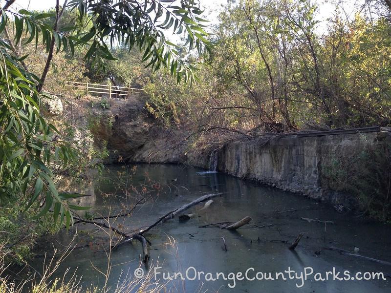Santiago Oaks Regional Park dam from below