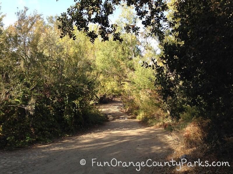 Santiago Oaks Regional Park trails