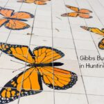 Gibbs Park and Summerlane Park in Huntington Beach for High-Flying Kites and Butterflies