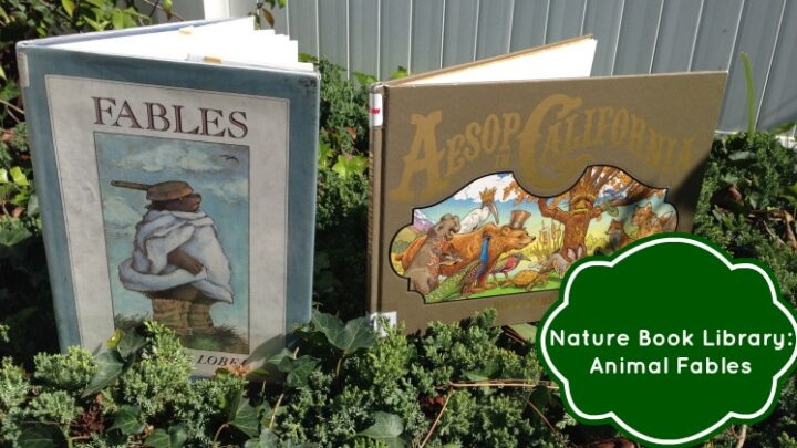 Nature Book Library: Animal Fables