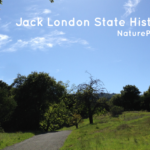Jack-London-State-Historic-Park-featured.png