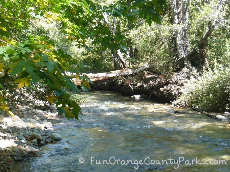 river at Big Sur State Park