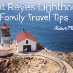 Point Reyes Lighthouse Visitor Center Family Travel Tips