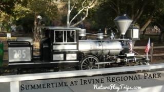 Summertime Irvine Regional Park