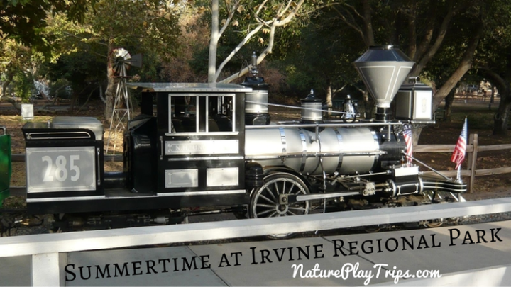 6 Things to Do with Kids at Irvine Regional Park in the Summertime