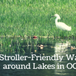 15 Stroller Friendly Walks