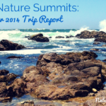 Trip Report: Family Nature Summits at Asilomar 2014