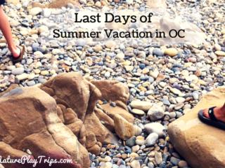 Last Days of Summer Vacation in OC