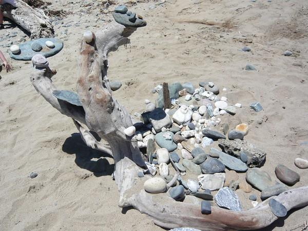rocks and log