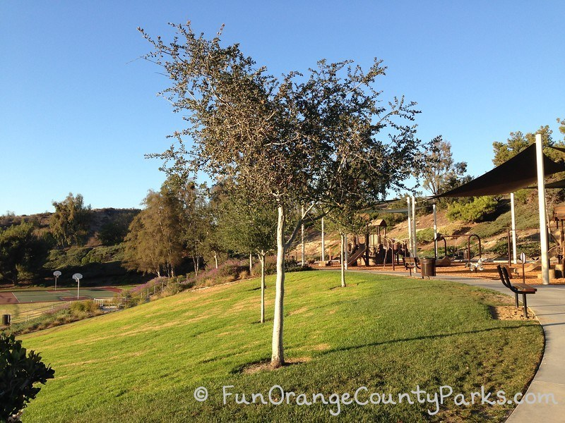 grassy hill at edge of playground